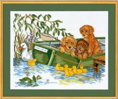 Puppy in boat