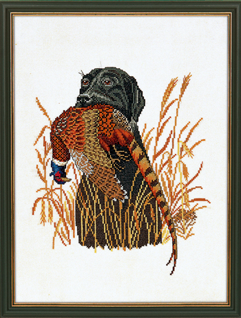 Hunting dog & pheasant