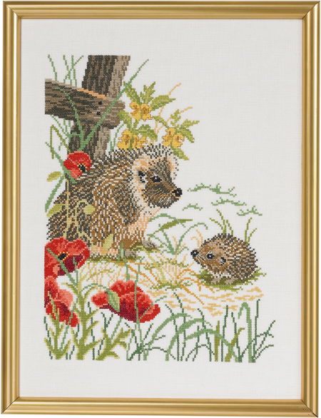 Hedgehogs and poppies